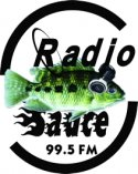 visit radio station web site - Radio Sauce 995 streaming internet radio station