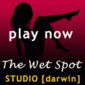 Thewetspot Fm Indy Alternative logo